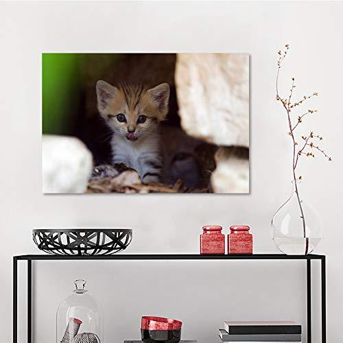Art Decor Wall Stickers, Baby Animals cat Cute, Art Prints W15.4 x L23.6 Inch ()