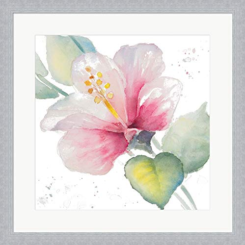 Fragrant Hibiscus II by Lanie Loreth Framed Art Print Wall Picture, White Silver Frame, 19 x 19 inches