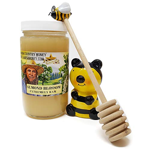 Goshen Honey Amish Extremely Raw ALMOND Blossom Honey 100% Natural Domestic Honey with Health Benefits Unfiltered Unprocessed | OU Kosher Certified | 1 Lb Glass Jar