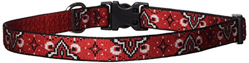 LupinePet 3/4-Inch Wild West 15-25-Inch Adjustable Dog Collar for Large Dogs