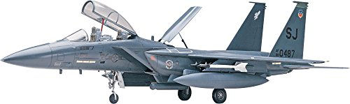 (Revell 1:48 F15E Strike Eagle)