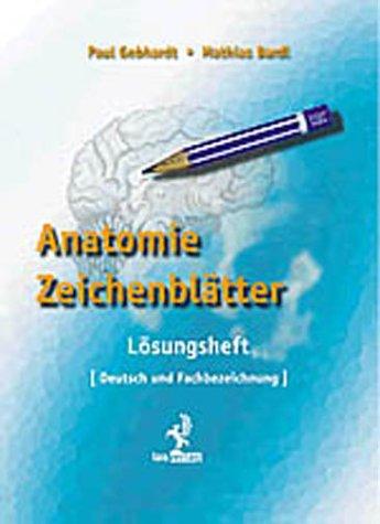 Anatomie Zeichenblätter: Lösungsheft