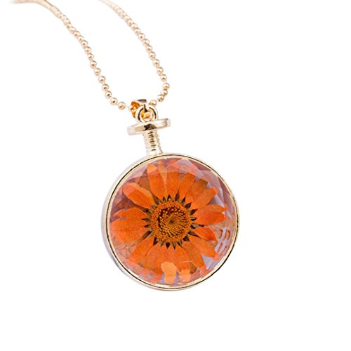 Stheanoo Round Shape Dried Flower Necklace Pendant Transparent Glass Alloy Pendant (Orange)