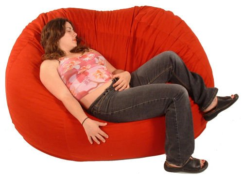 Comfy Bean Beanbag Loveseat Cotton by Bean Products (Image #2)