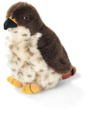 Red-tailed Hawk - Audubon Plush Bird Authentic Bird Sound by Wild Republic