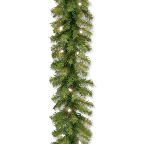 National Tree 9 Foot by 10 Inch Norwood Fir Garland with 50 Battery Operated Warm White LED Lights (NF3-308-9A-B) (Lights With Christmas Led Garland)