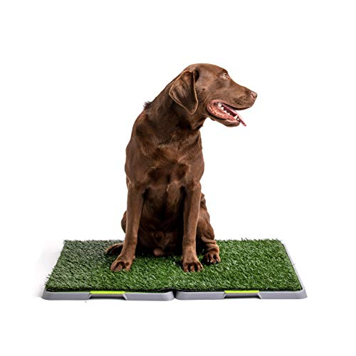 Silver Paw Potty Patch Dog Potty - Replaces Wee Wee Pads - The Best Pet Turf Potty Training Tool - Works for Puppies & Adult Dogs - For Big Dogs