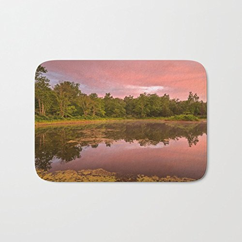 (Afagahahs Cushion Pink Twilight Peace Jungle And River Short Plush Top Doormat Creative Indoor Mat Standar Size 18x30 Inches Durable And Beautiful Rug)
