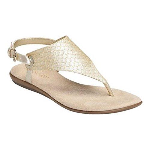 Metallic Gladiator Gold Women's Sandal Aerosoles Conchlusion HXqRE