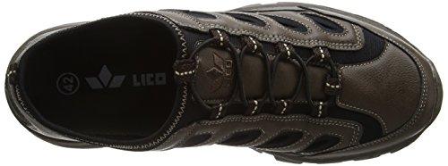braun Low Toronto Lico schwarz Men's Sneakers Braun wxXRxA6qp
