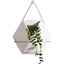 Candyqueen 1Pcs Geometric Wall Decor Container Wall Vases Hanging Planter Great For Succulent Plants, Air Plant, Mini Cactus, Faux Plants and More, White Ceramic