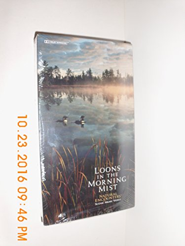Loons in the Morning Mist -  Unison Music