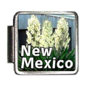 New Mexico State Flower Yucca Flower Photo Italian Charm Bracelet - Italian 9mm Charm Photo New