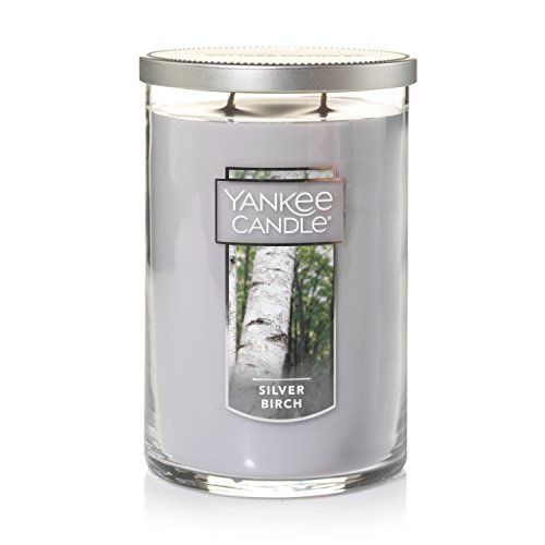 Yankee Candle Large 2-Wick Tumbler Candle, Silver Birch