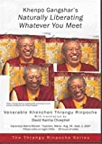 img - for Khenpo Gangshar's Naturally Liberating Whatever You Meet book / textbook / text book