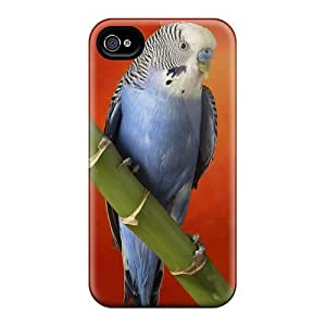 Tpu Case For Iphone 4/4s With Colorful Budgerigar