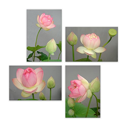 - Ruoya Arts 4 Panels Wall Art Blossom Water Lily Framed Painting Lotus Flower Pictures on Canvas for Home Decoration Gift 12x18 inch