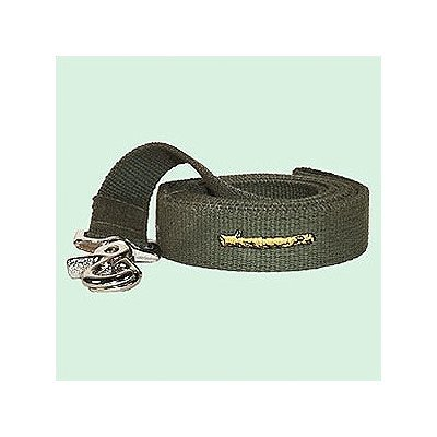 Stick Cotton Leash Color: Olive, Size: Small
