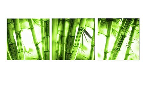 Kitchen Canvas Wall Art Green Bamboo 12