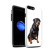 STUFF4 Gloss Tough Shock Proof Phone Case for Apple iPhone 8 Plus / Swiss Mountain Design / Dog Breeds Collection