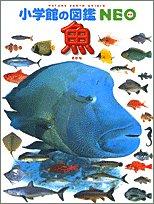 井田 斉の商品画像