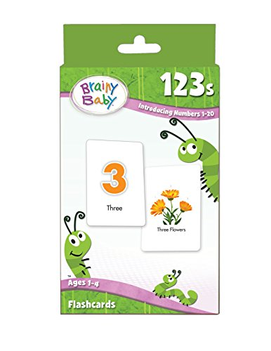 Brainy Baby 123s Flash Card Set Introducing Numbers 1 to 20 Brainy Baby Picture