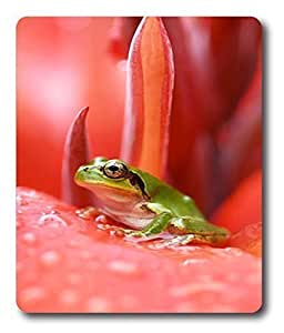 business mouse pads Tiny Frog Animal PC Custom Mouse Pads / Mouse Mats Case Cover