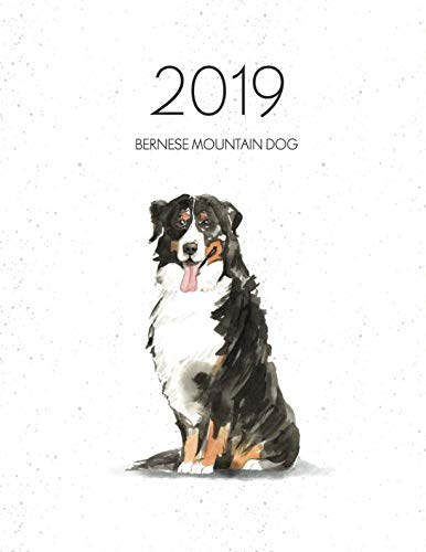 2019 Bernese Mountain Dog: Dated Weekly Planner With To Do Notes & Dog Quotes - Bernese Mountain Dog (Awesome Calendar Planners for Dog Owners) ()