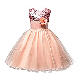 Girls Sequined Flower Bridesmaid Dress