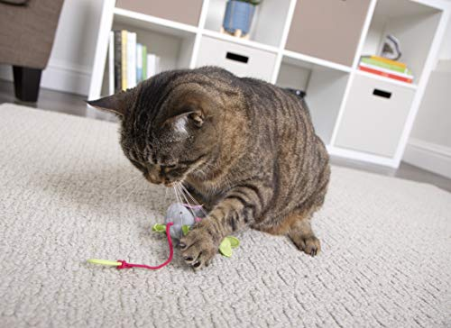 SmartyKat Interactive and Wand Cat Toys 11