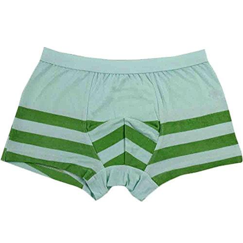 Stripe Boxer Briefs Boys Underwears Kids Modal Underwears For Boys(Green) for cheap