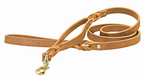 Dean & Tyler Braidy Bunch Dog Leash with Quality Leather and Solid Brass Hardware, 6-Feet by 3/4-Inch, Tan by Dean & Tyler