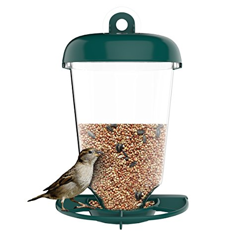 Top 10 Bird Feeders For Balconies Of 2019 No Place