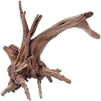 Amazon Com Fluval Mopani Driftwood Small 4 X 9 8 In