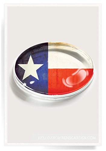 Texas Flag Crystal Oval Paperweight