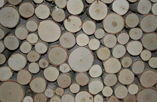 Decorative Log - Wilson Enterprises White Birch Fill-A-Space Logs