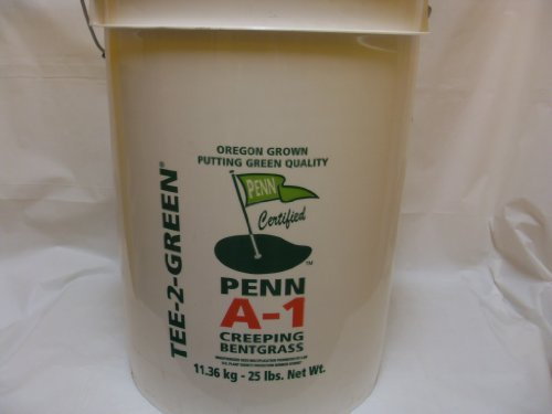 Penn A-1 Creeping Bent Grass Seed, 25 Pounds