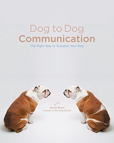 Dog to Dog Communication: The Right Way to Socialize Your...