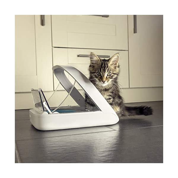 SureFeed Microchip Pet Feeder, White (4 x C Batteries Required) 5