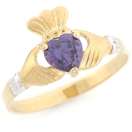 - Jewelry Liquidation 10k Two Tone Gold Claddagh Simulated Amethyst February Birthstone Ring