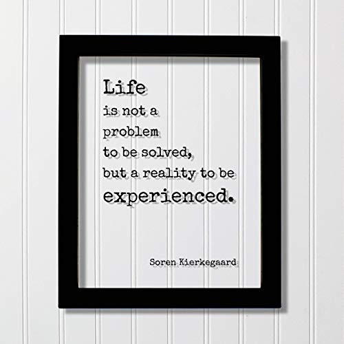 Soren Kierkegaard - Life is not a problem to be solved, but a reality to be experienced - Floating Quote - Wisdom Prosperity