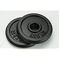 Schmidt Discos Peso Libre de Hierro Fundido (2x1,25kg)