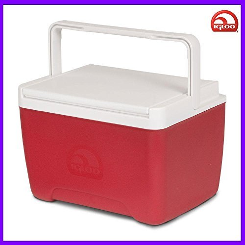 9 quart igloo cooler - 6
