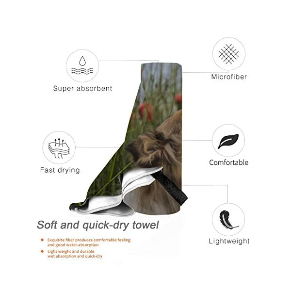 WIEDLKL Cute Gold Rough Collie Sniffing Red Bathroom Towels Microfiber Kids Sport Towel Sport Towel for Women Beach Towel Funny 27.5'' X 51''(70 X 130cm) Best for Gym Travel Camp Yoga Fitnes 3