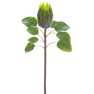 "26"" Protea Silk Flower Stem -Green (Pack of 12) 27"