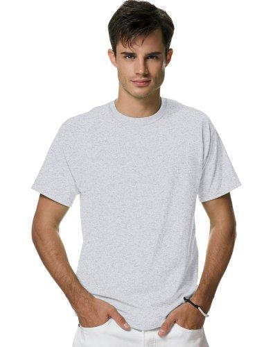 Hanes mens Adult X-Temp Unisex Performance T-Shirt(P4200)-LIGHT STEEL-2XL