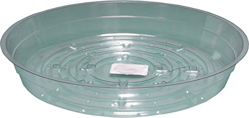 - Hydrofarm HGS6 Clear 6-Inch Saucer, Pack of 25