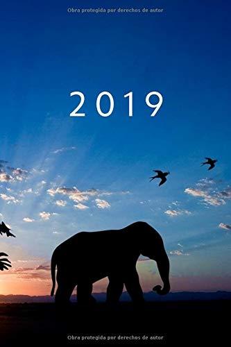 2019 ENE - DIC Agenda Semanal | 152 x 229 mm | 1 Semana en 2 Páginas | 52 Semanas Planificador y Calendario | Elefante  [Otto Organizador] (Tapa Blanda)