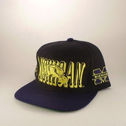 8967cd66713 Amazon.com   Michigan  Wolverines  AJD  NCAA  Vintage Deadstock ...
