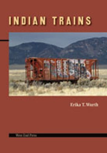 Indian Trains by Erika T. Wurth (2007-11-15)
